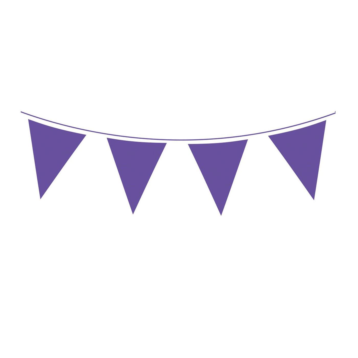 Purple Bunting